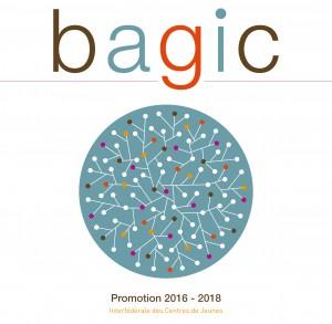 ICJ_bagic_brochure_21_04_2016_def-1